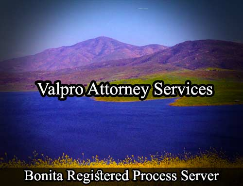 Bonita Registered Process Server