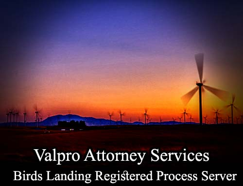 Birds Landing California Registered Process Server