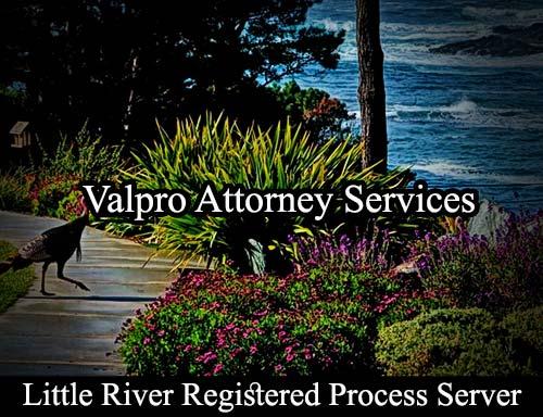 Little River California Registered Process Server