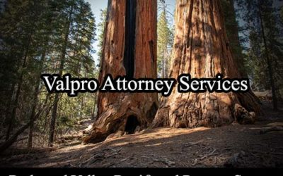 Redwood Valley California Registered Process Server